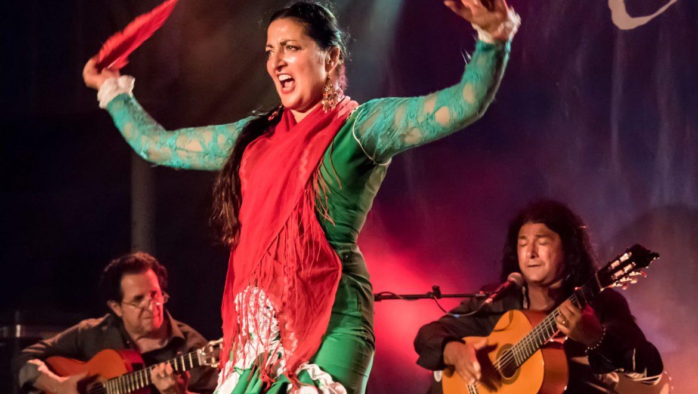 Danseuse Flamenco, Musiciens Espagnols, Gipsy, Gitan, Animart