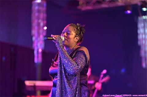 Chanteuse soirée privée, Animart