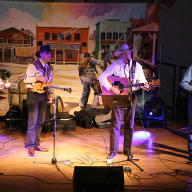 Chanteurs et Musiciens Country